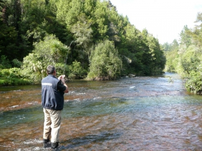 Tips To Follow During Taupo Trout Fishing Nz To Catch A Rainbow Trout